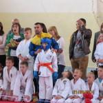 22 лютого 2015р., м. Черкаси відбувся  Обласний фестиваль «Бойові мистецтва – Спорт для всіх»